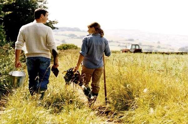 خرید زمین در کانادا