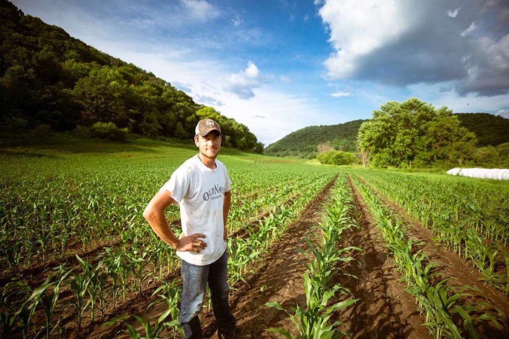 طرح مزرعه داران جوان