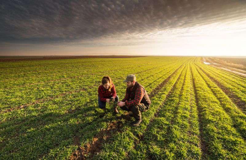 برنامه کشاورزی ساسکاچوان